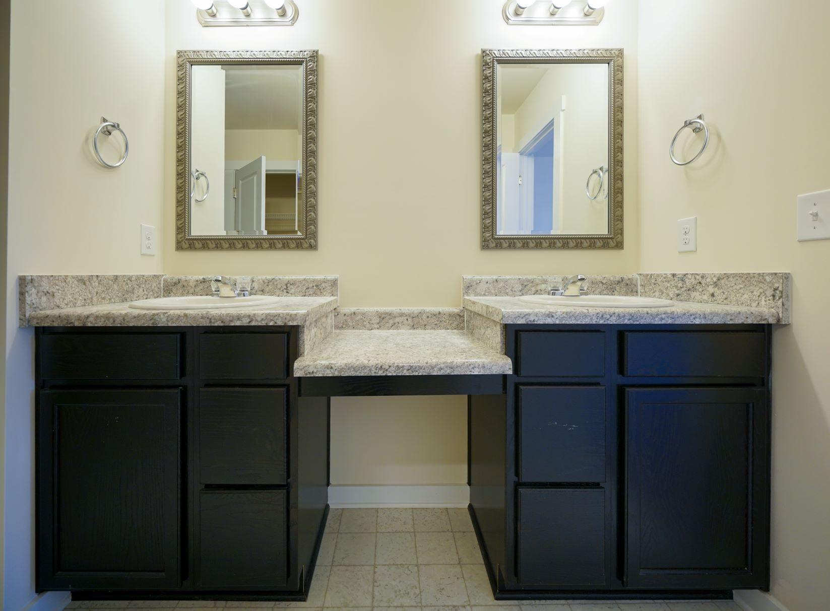 Master dual Sinks (1)